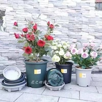the new three generation gallon basin thickened resin root control breathable living room growing flowers and green plants simpl
