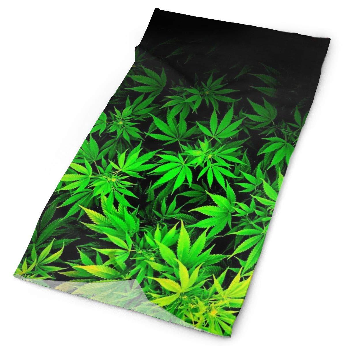 Verde claro impresionante sombrero de hojas de marihuana-16 maneras de llevar incluyendo diadema/polainas de cuello/Bandana/revestimiento de casco/pasamontañas/magia
