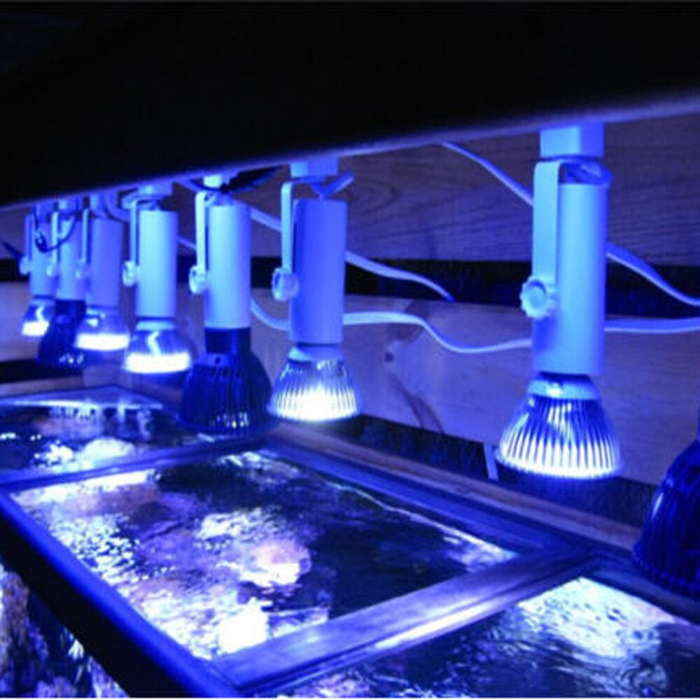 E27 acuario marino lámpara LED 21W luz LED para cultivo de plantas blanco azul lámpara PAR30 espectro completo arrecife Coral pecera acuario SPS LPS