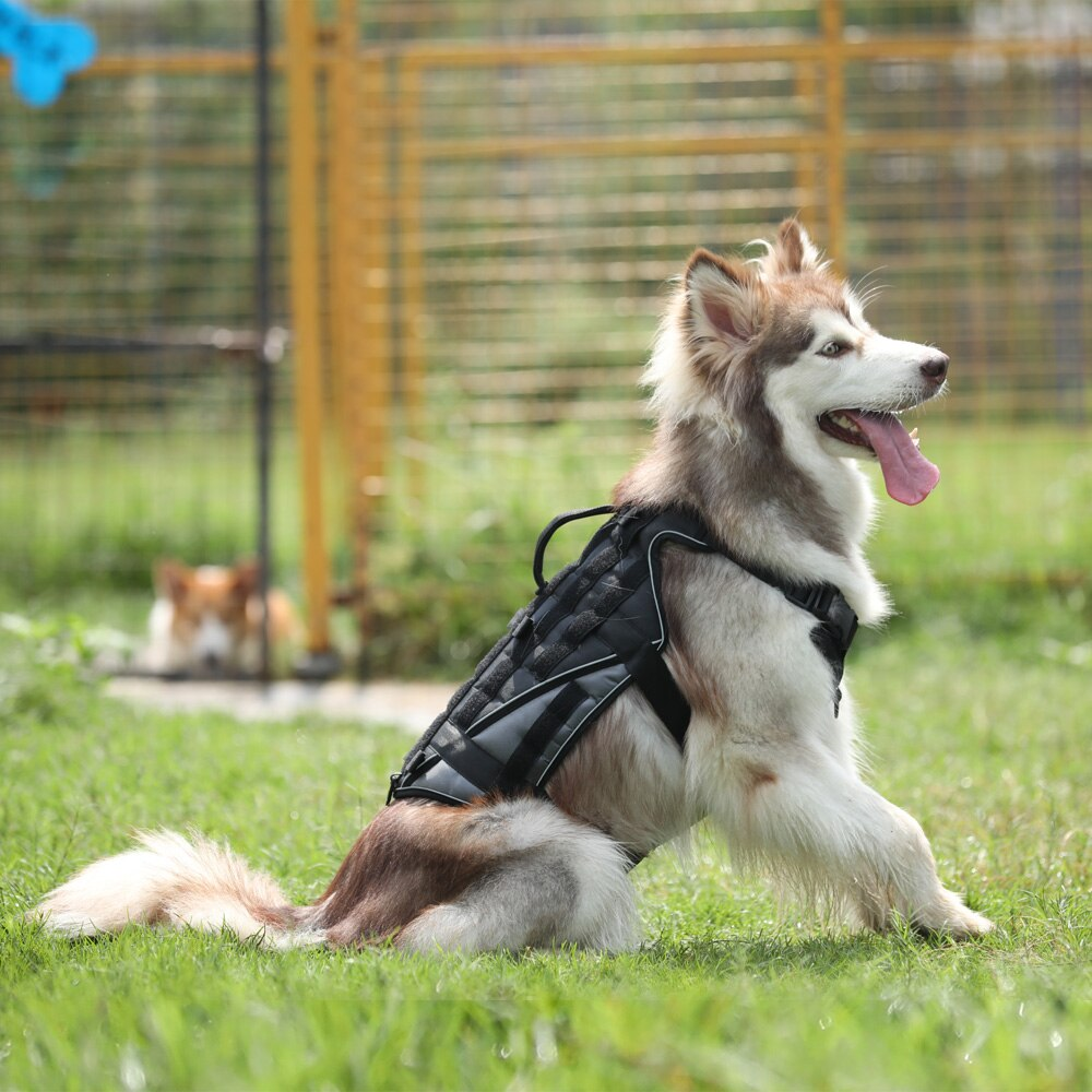Arnés táctico para perros K9 de alta calidad tela Oxford 1680D con chaleco de Velcro para perros de tamaño mediano