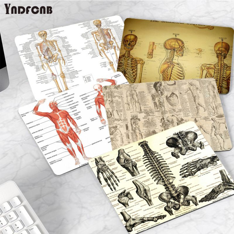 YNDFCNB Beautiful Anime medicine anatomy small Mouse pad PC Computer mat Smooth Writing Pad Desktops Mate gaming mouse pad maiya funny tie dye customized mousepads computer laptop anime mouse mat smooth writing pad desktops mate gaming mouse pad