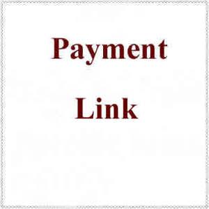 Ссылку оплаты (в том случае, если вам нужно будет оплатить $10, просто Купите 10 шт.; Если вам нужно будет оплатить $10 0, просто оплатите 100 шт.)