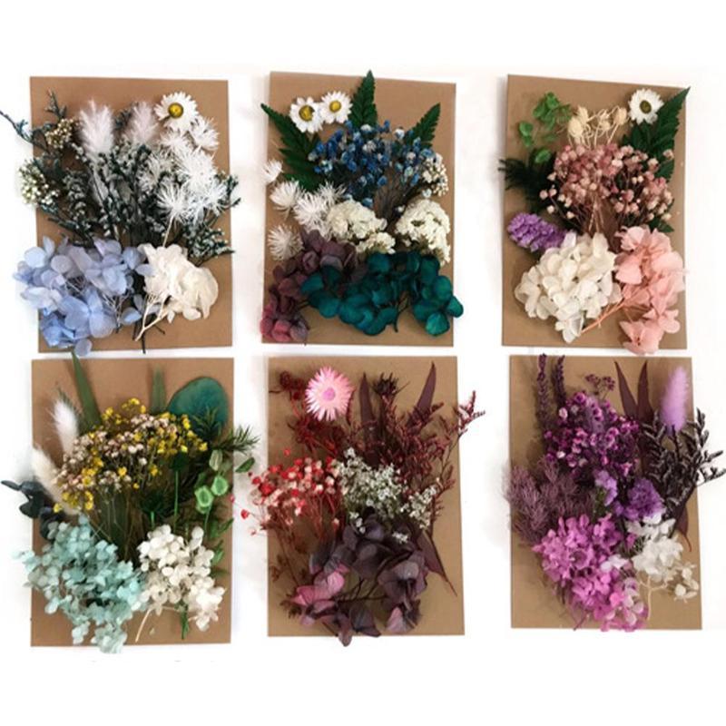 Mini flor seca en relieve para manualidades, álbum de recortes de flores,...