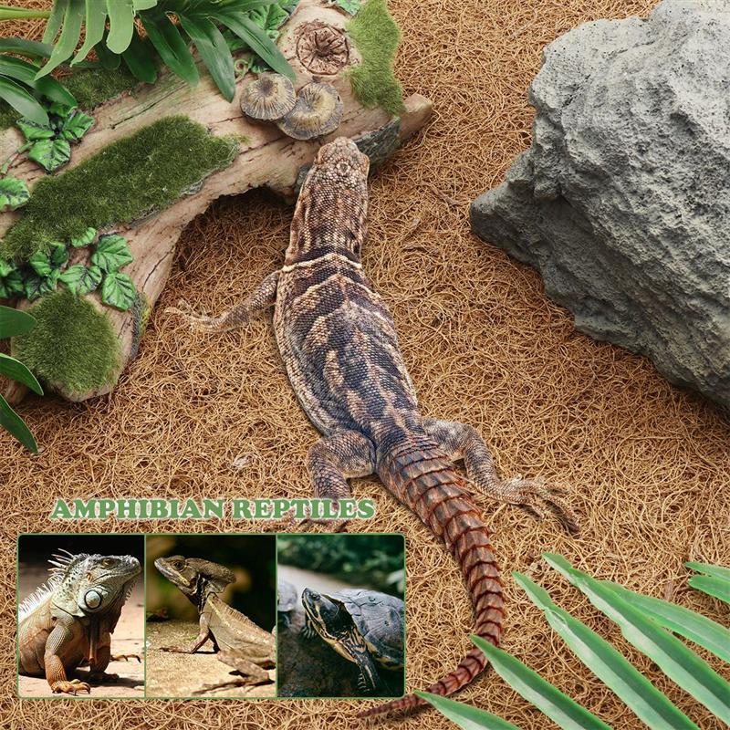 Bestomz réptil tapete de fibra coco natural tapete forro cama suprimentos réptil para lagarto cobra camelon tartaruga 60x40cm