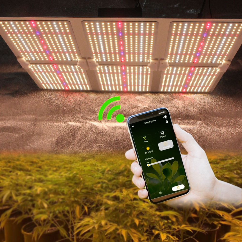 Greenhouse Phyto Lamp 6000W Samsung LM301B LED Quantum Grow Light Tech Board Indoor Hydroponics Growing System Meanwell Driver