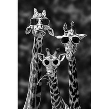 Funny Giraffe Family with Sunglasses 5d Diamond Painting Black And White Animals 3d Diy Embroidery W