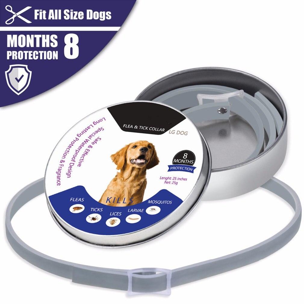 Nuevo Dewel antipulgas, mosquitos, insectos, protección de 8 meses, Collar de perro resistente al agua de larga duración, collares personalizados para cachorros, gatos y mascotas