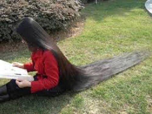 Increíble Paquete de hierbas Ayurveda para la pérdida de cabello y el crecimiento del cabello   Paquete de hierbas   Amla   Methi   Shikakai en polvo