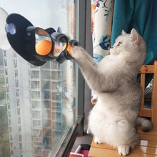 10 pièces chat pour animaux de compagnie drôle balle jouet ventouse fenêtres chat jouet jouer tuyau avec balles chat jouet piste jouer Tunnel jouets pour animaux de compagnie approvisionnement