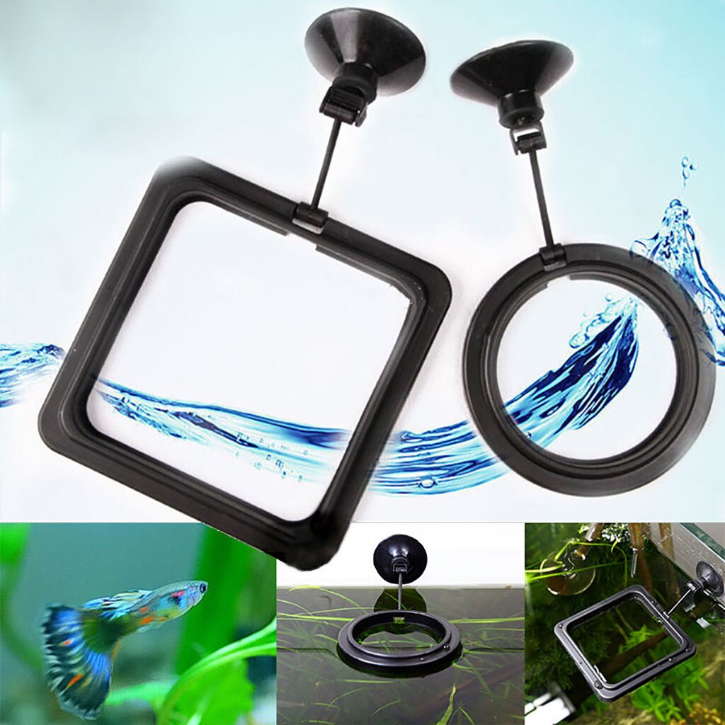 1pc Feeding Ring Aquarium Fish Tank Station Floating Food Tary Feeder Square/Circle Accessory Water Plant Buoyancy Suction #ND