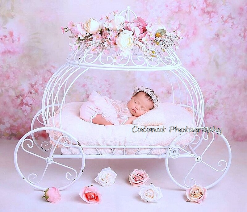 Coconut Newborn Photography Props Baby Iron Princess Cinderella Carriage Prop Posing Pumpkin Car Poser Fotografia Photo Props enlarge