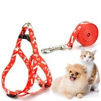 Поводок для маленьких собак и кошек, Регулируемый жилет, ошейник для щенков, прогулок на открытом воздухе, чихуахуа, терьер, шнаузер