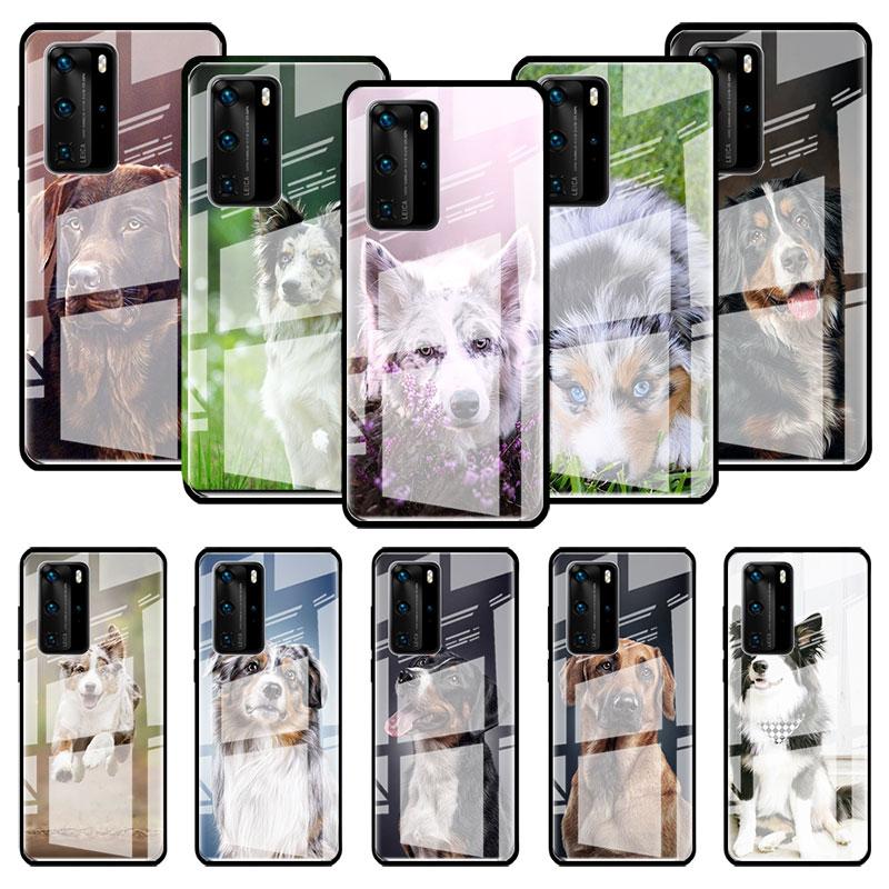 Стеклянный чехол Border Collie Dog Для Huawei P20 P40 Lite E P30 Pro P Smart 2019 Mate 10 20 X Stalinite чехол для телефона Capas