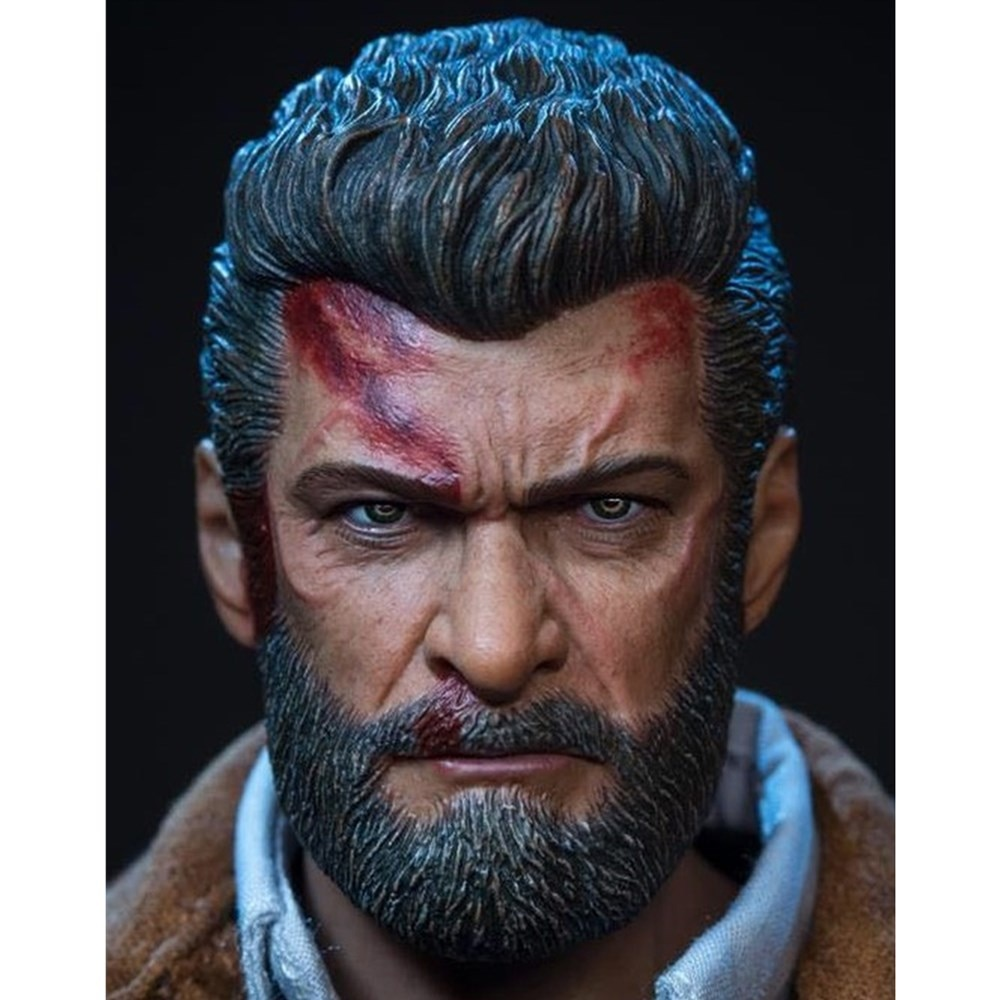 In Stock 1/6 Scale Logan Head Sculpture Carved Accessory Model for 12