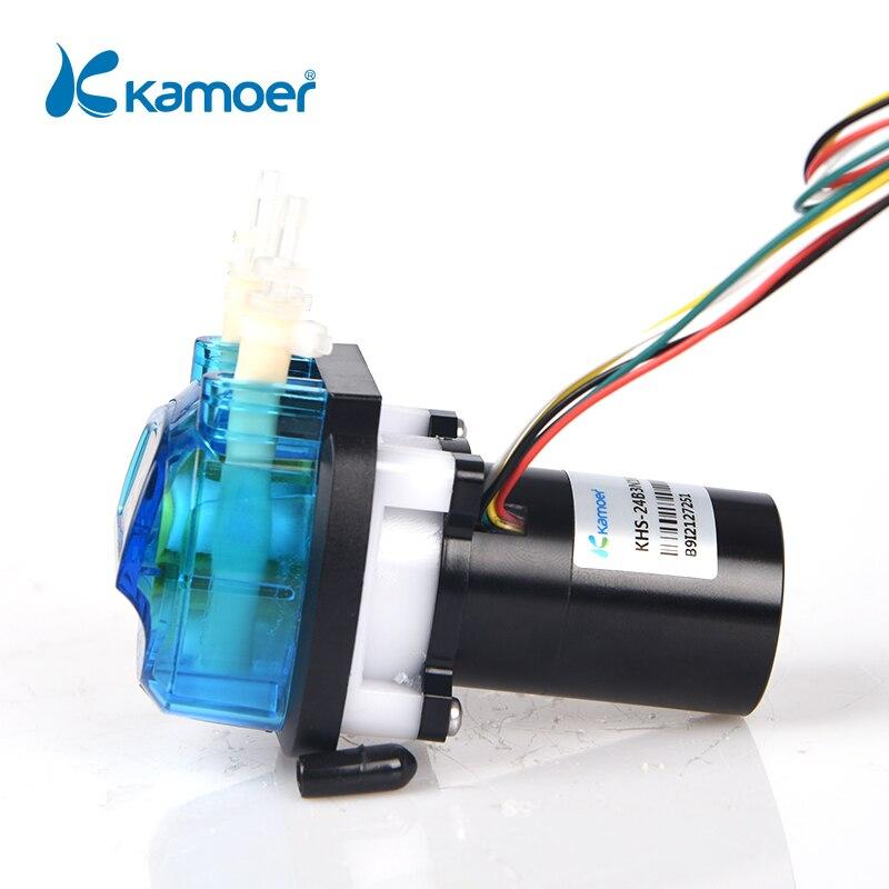 كاموير KHS عالية الدقة محرك BLDC OEM مضخة الجرعة التمعجية مع أنبوب Norprene/أنبوب سيليكون لسقي الحديقة