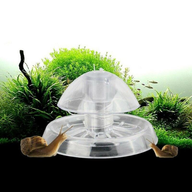 Piège à escargots Aquarium plante   Aquarium réservoir en plastique transparent, boîte de capture de parasites, Leech environnement nettoyeur de plantes, outils