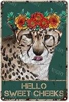 Citation drole de salle de bain en metal  signe en etain  decor mural Vintage Hello Sweet joues  leopard  couronne de Foral  signe en etain