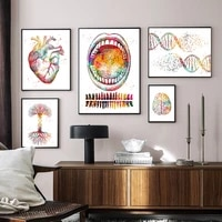anatomy art human heart brain posters prints tooth chart knee bone canvas painting dna tree wall pictures doctor office decor