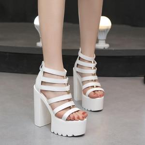 High heels women 2018 new waterproof platform fish mouth all-match sandals 14cm sexy nightclub thick heel model catwalk shoes