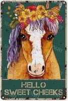 Citation drole de salle de bain en metal  signe en etain  decor mural Vintage Hello Sweet Cheeks cheval avec fleurs  signe en etain