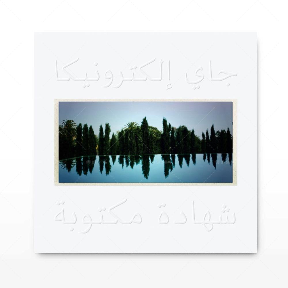 Hd moderno Jay Electronica un discurso escrito música álbum cubierta lienzo Poster pared pintura arte decoración del hogar foto impresión
