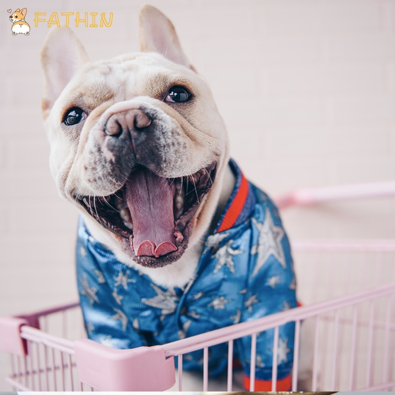 Ropa para perro Bulldog a la moda francesa, Sudadera con capucha, lujoso abrigo de deporte de Adidog, Sudadera con capucha Retro Para perro mascota, ropa para S-XL