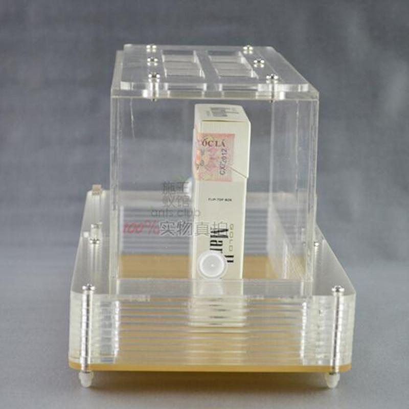 Caixa de Alimentação High-end da Caixa de Alimentação da Ligação Quatro-face da Área da Atividade da Formiga Acrílica com Ninho da Formiga da Prevenção da Fuga High-end Ligação da