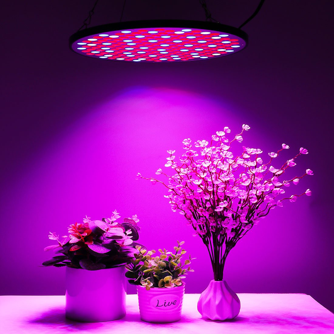50W Grow Light Full Spectrum Indoor LED Growing Lamps AC85-265V Plant Growth Lighting for Plants Flowers Seedlings Cultivation