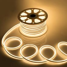 5M 10M 15M 20M 220V Flexible LED néon bande ue adaptateur extérieur IP68 ruban LED bande jardin noël décor LED bande lumière