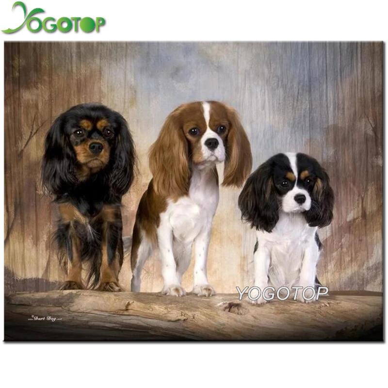 5d Diy diamante pintura Cavalier rey Carlos Español perro taladro completo mosaico arte diamante bordado manualidades animales YY1709