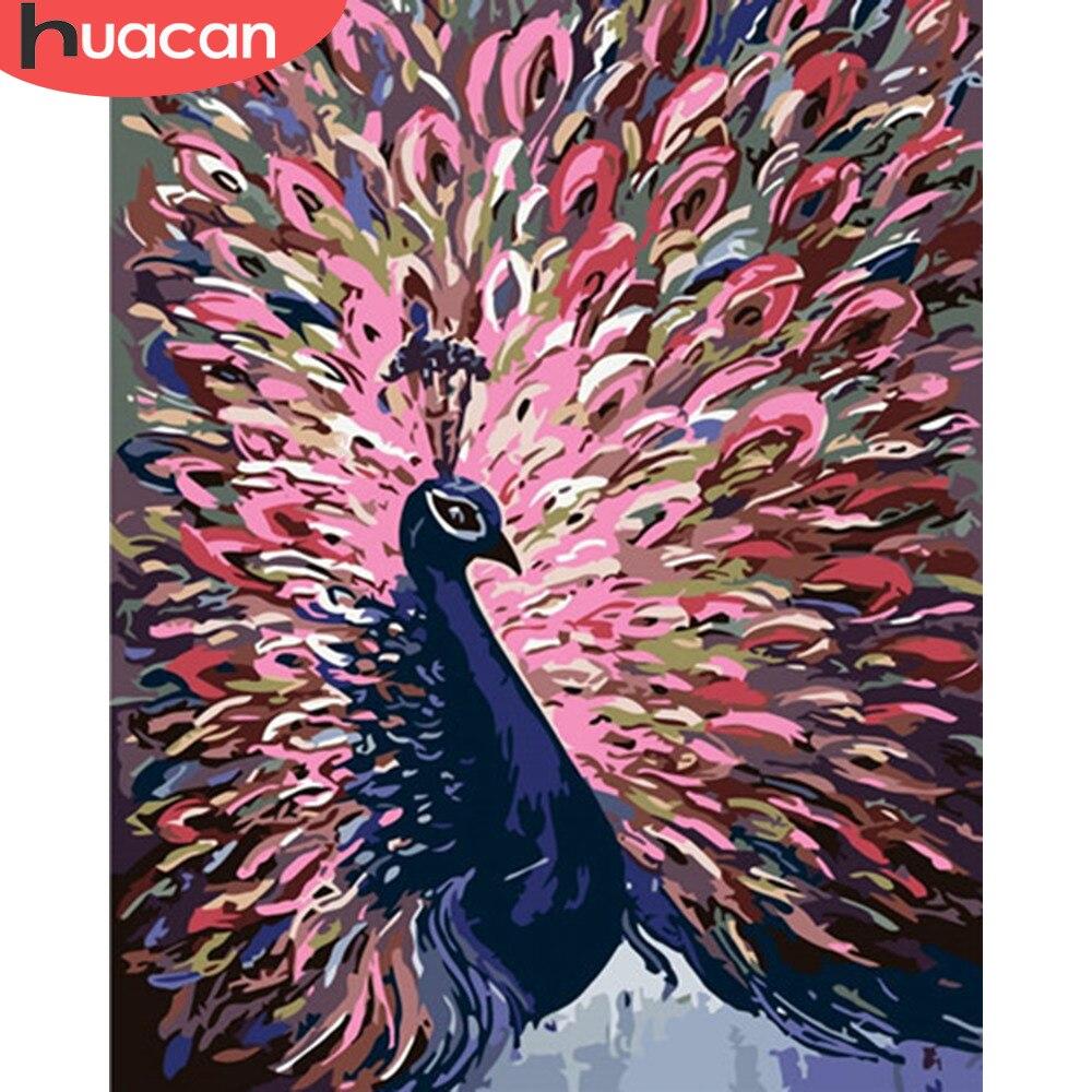 Huacan pintura a óleo por números pavão animais kits de desenho da lona pintados à mão diy pictureshome decoração arte