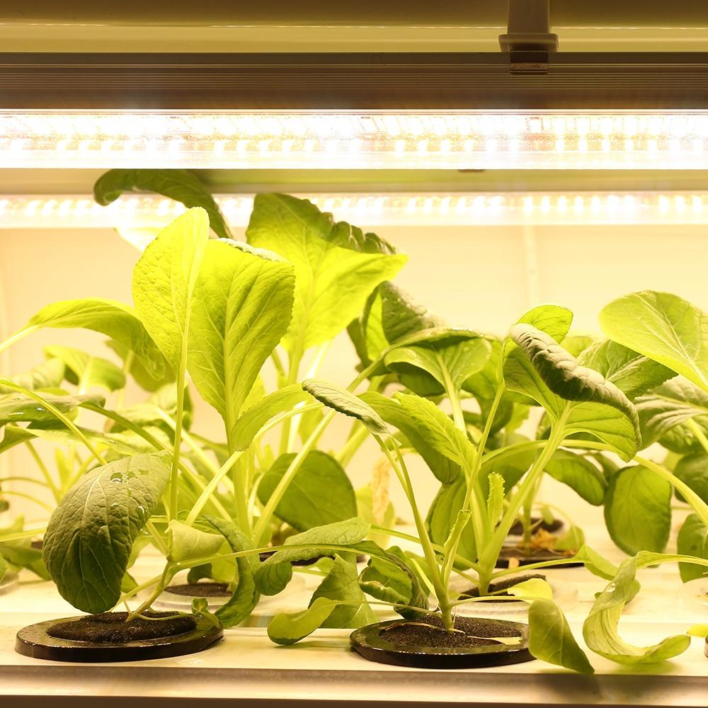 5pcs/lot 60cm T8 Tube LED Grow Light Bars Warm Full Spectrum Plant Lamp for hydroponics seedlings vegs greens grow tent enlarge