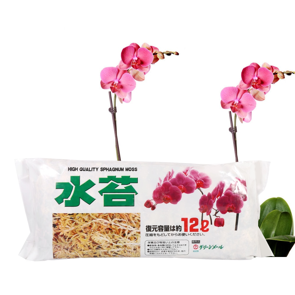 High Quality Multifunction Garden Supplies Sphagnum Moss Moisturizing Nutrition Organic Fertilizer For Phalaenopsis Orchid