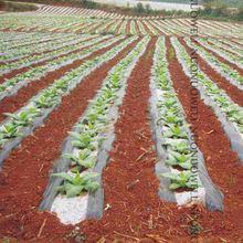 5m Weiß Und Schwarz Landwirtschaft Garten Film Gemüse Pflanzung Kunststoff Mulchen Film Pflanzen Pest Unkraut Control Halten Warme Wachsen film