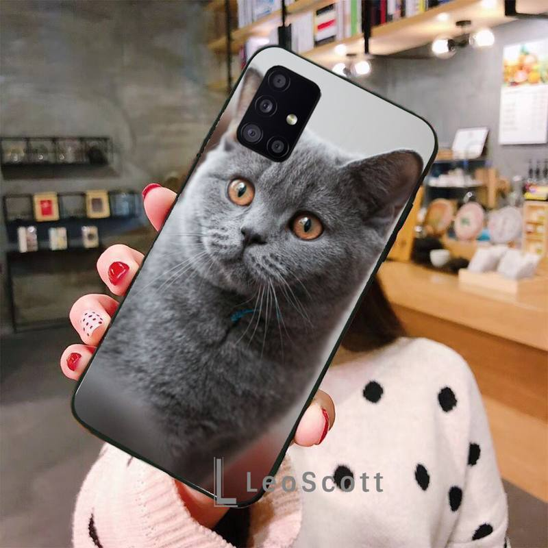 British shorthair cat Phone Case For Samsung A40 A50 A51 A71 A20E A20S S8 S9 S10 S20 Plus note 20 ultra 4G 5G  - buy with discount