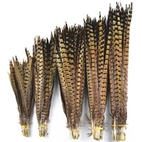 natural ringneck pheasant tail feathers for crafts 15 65cm6 26 wedding feathers decoration hair pheasant feather decor plumas
