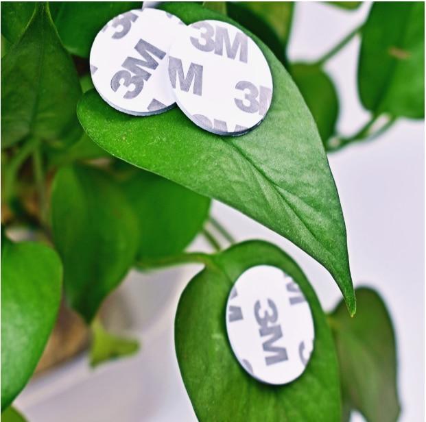 Etiquetas 13,56 MHZ NFC MF 1K S50 F08 ISO14443A Tarjeta de moneda NFC inteligente Dia 25mm con adhesivo 3M