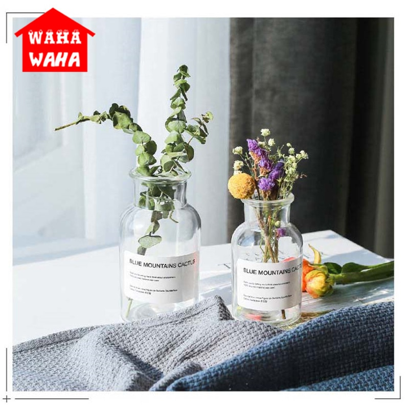 Jarrones de vidrio transparente nórdico, contenedores de terrario, planta hidropónica, florero, ramo de flores, mesa decorativa para sala de estar
