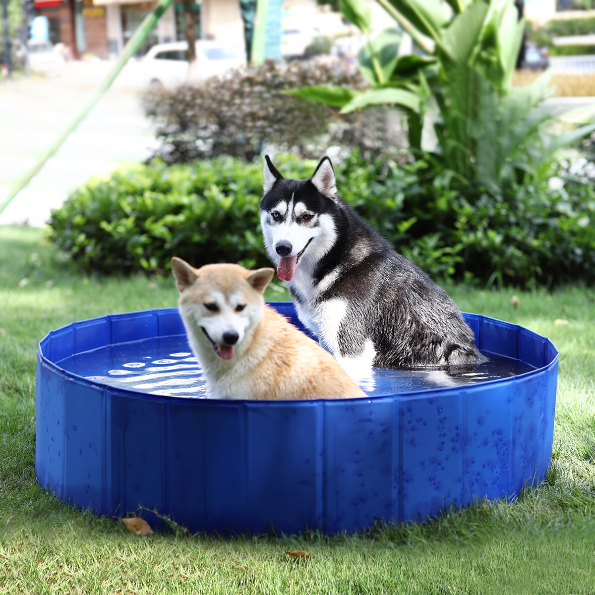 AliExpress - Foldable Pet Swimming Pool Dog Outdoor Bathing Pool Bathtub Indoor Collapsible Showering for Dogs Ducks