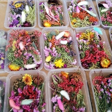 1 Box Mixed Real Dried Flowers Dry Plants Pressed Flowers For Epoxy Resin Pendant Necklace Jewelry M