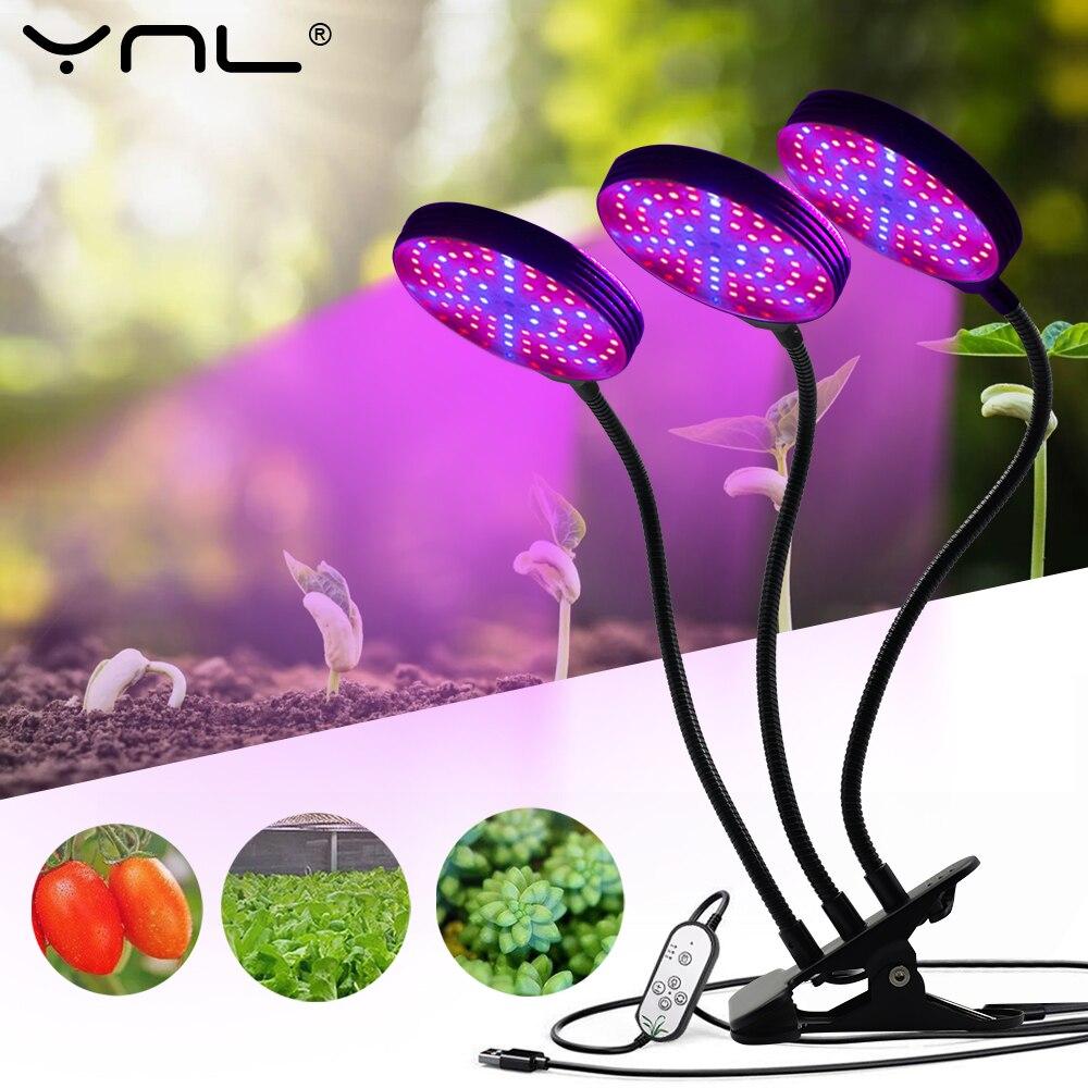 LED Wachsen Licht USB DC5V Phytolamps Volle Spektrum 15W 30W 45W 60W Mit Timer Control Indoor home Für Pflanzen Blumen Wachsen Box