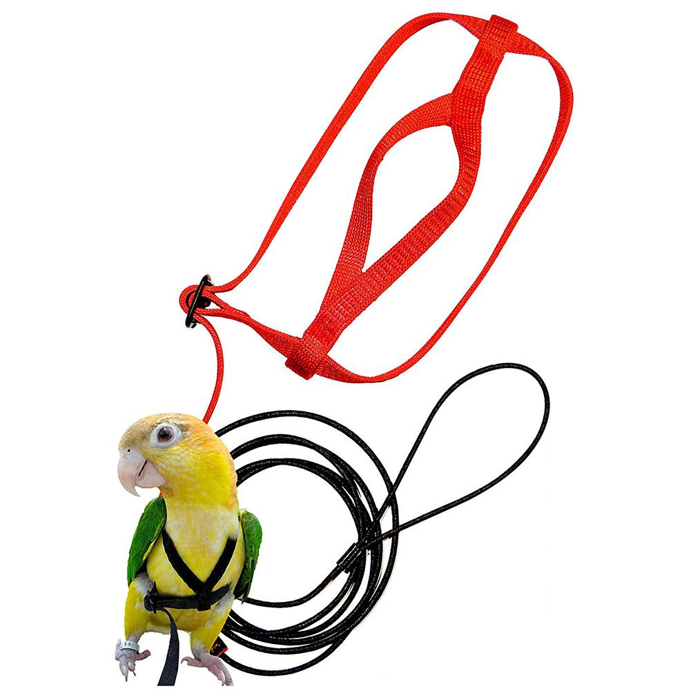 Parrot Harness and Leash Flying Anti-bite Traction Rope bird Training Outdoor Carrying for Psittacus Erithacus Scarlet Macaw Par