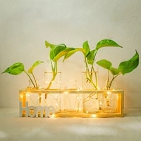 new arrivals ins popular vintage glass test tube vase hydroponic vase small desktop decoration vase household with wood stand