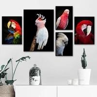 white cockatoo australian animal red parrot diy diamond painting crystal art cross stitch kits bird mosaic embroidery home decor