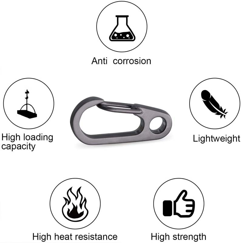 5Pcs/Lot Mini Carabiner Clips Tiny Alloy Spring Snap Hook Keychain Clasps EDC Small Hanging Buckle for Backpack Camping Bottle