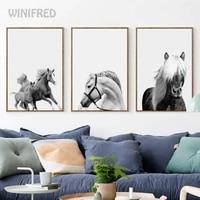 Pentium     affiche de cheval grise  toile Simple  peinture murale imprimee  image dart pour salon chambre a coucher  decoration nordique  decoration de maison