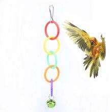 Perroquets gris africain jouets pour oiseau calopsitte et animaux de compagnie Cage accessoires cloches perche perruche perruche décoration jouet perroquet
