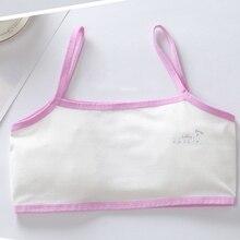 Young Girls Students Bra Solid Cotton Purbery Children teenagers  Underwear Kids Vest Training Bras