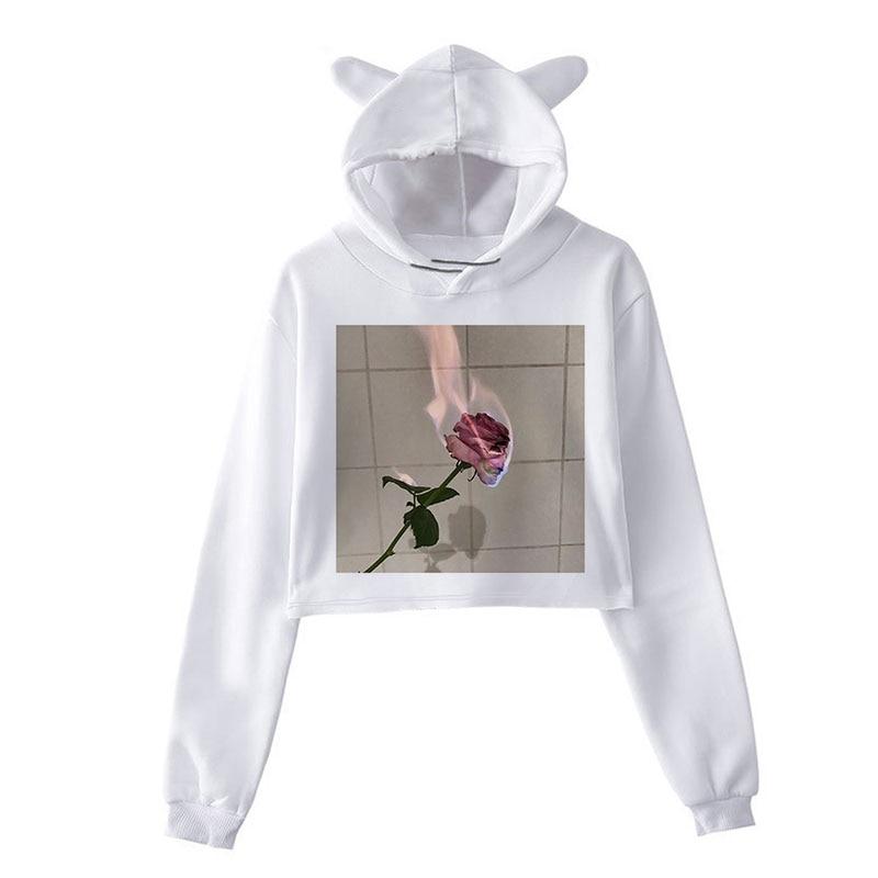 Rosa impresso hoodies sweatshirts feminino colheita topos manga longa casual outono inverno pullovers rua solta plus size camisolas