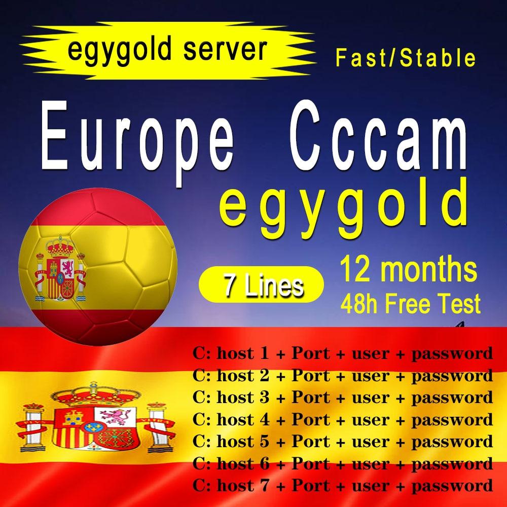 Egygold CCAM TV Receiver AV Cable line in europe cline egygold 7 lines Freesat ccam cline for DVB-S2 Gtmedia v8 nona v9 v8x v7 s